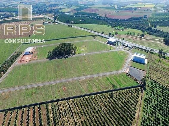 Terreno Em Condomínio Industrial Em Mogi Mirim - Limeira - Te00481 - 34358289