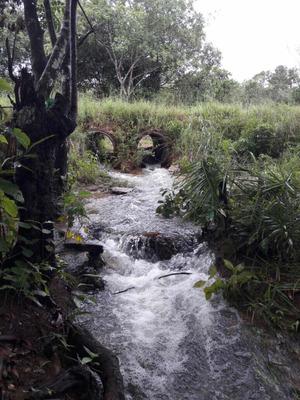Fazenda Dupla Aptidão Município Duere Tocantins