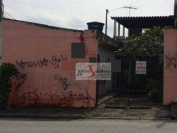 Terreno Residencial À Venda, Vila Invernada, São Paulo. - Te0279