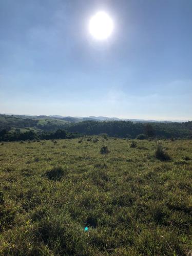 Imagem 1 de 14 de D03- Promoção Terrenos Com Ótima Topografia