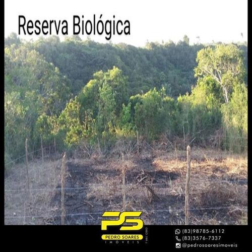 Imagem 1 de 2 de (oferta)  Terreno À Venda, 300 M² Por R$ 50.000 - Bananeiras - Bananeiras/pb - Te0280
