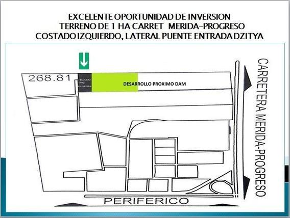 En Venta 1 Ha., Excelente Oportunidad De Inversión Al Norte De La Ciudad De Merida