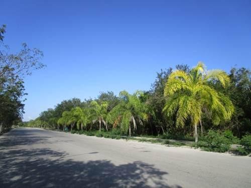Lote Comercial Paseo Del Mayab Playa Del Carmen C2383