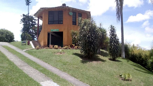 Finca De Aguacates En Guarne, Antioquia - Se Vende