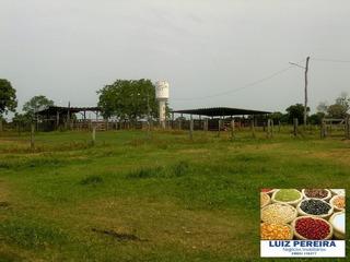 Fazenda A Venda Em Sandolândia -to De 930 Alqueirões Em (dupla Aptidão) - 1332
