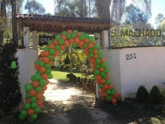 Chácara Para Venda Em Suzano, Palmeiras - Ve1547_2-943202