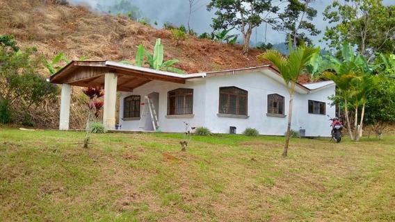Gran Propiedad Con Hermosa Casa , Perez Zeledon