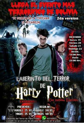 Laberinto Del Terror De Harry Poter