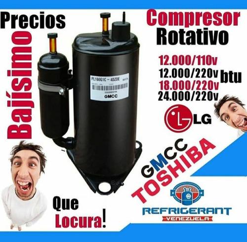 Compresor 24.000 Btu 220v