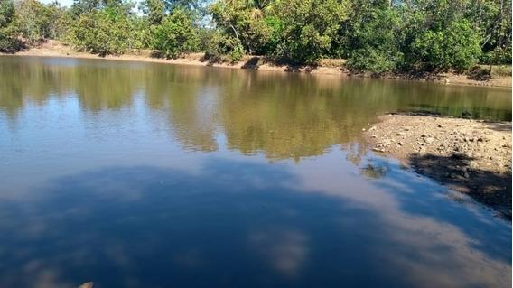 Fazenda A Venda Em Camapuã - Ms (pecuária) - 1153