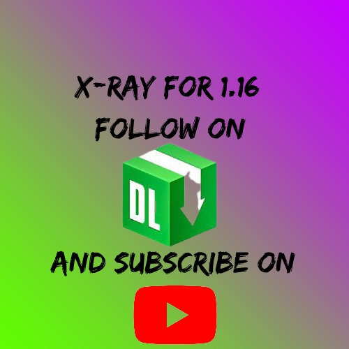 X Ray Minecraft