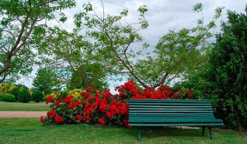 Parcela Cementerio Parque Del Reencuentro