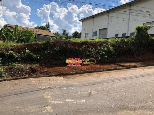 Imagem 1 de 2 de Terreno Industrial - Bairro Da Ponte - Te0274