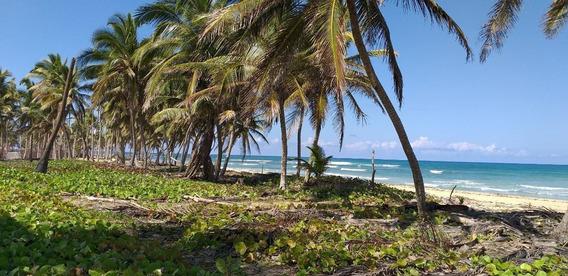 Terreno En Uvero Alto Frente Al Mar
