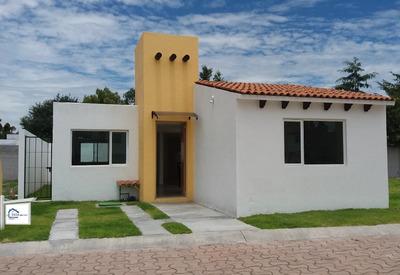 El Pueblito Centro, Privada Con Alberca, Una Planta, 2 Recámaras, T.140 M2, Lujo
