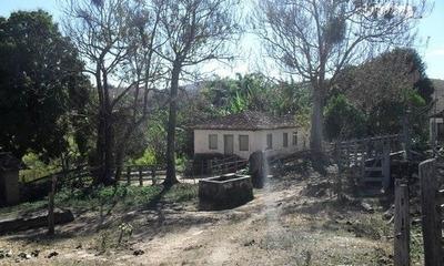 Fazenda Com 151 Ha , Casa Sede, Casa Caseiro , 26 Klm De São João Del Rey , Terreno Com Muita Água , E Uma Várzea Muito Boa. - 4198