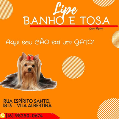 Lipe Banho E Tosa