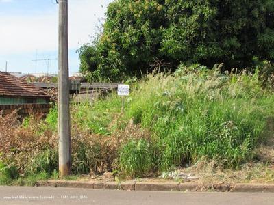Terreno Para Venda Em Pirapozinho, Vila Ideal - 20150