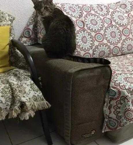 Arranhador Gatos E Protetor De Sofa + Frete Gratis