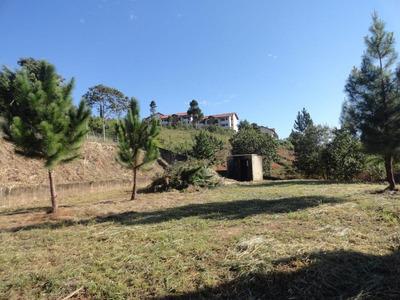 Terreno Residencial À Venda, Bosque Dos Jequitibás, Serra Negra - Te0847. - Te0847