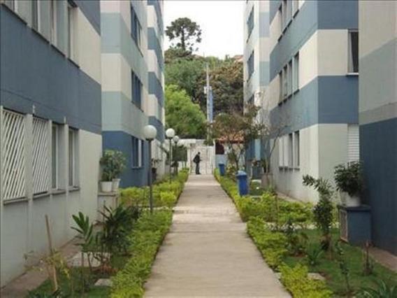 Apartamento Em Itaquera, São Paulo/sp De 50m² 3 Quartos À Venda Por R$ 255.000,00 - Ap233238