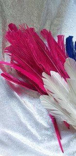 Pluma Pato Blanca O Colores 25 A 30cm Largo X 130 Unidades