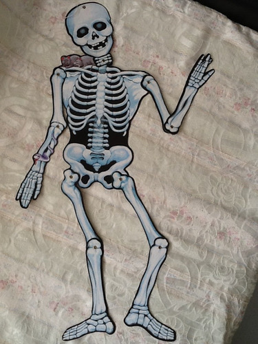 761a5162cec Esqueleto De Cartón Para Decoraciones Halloween - Bs. 19.800,00 en Mercado  Libre