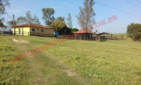 Venda - Sítio - Zona Rural - Limeira - Sp - D0279