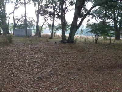 Terreno Puede Ser Utilizado Para Bodegas, Ranchos, Sembradio