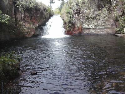 Fazenda Em Ponte Alta Do Tocantins - To, Dupla Aptidão - 390