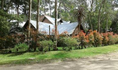 Casas En Venta En Jacaranda Al 100 En Otro