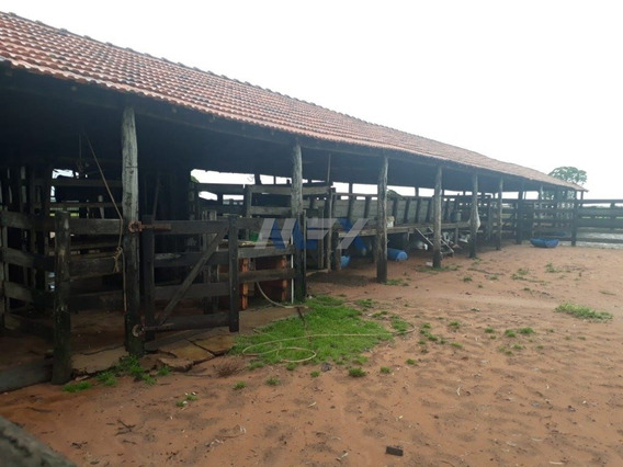 Sitio - Rural - Ref: 6237 - V-6237