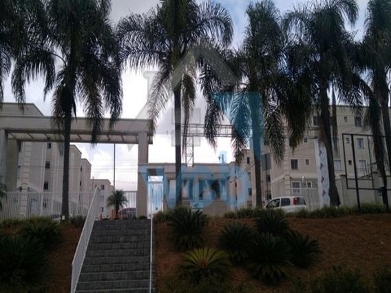 Apartamento De Excelente Bom Gosto No Bairro Cachoeira, Podendo Ser Financiado - Ap00070 - 32423596