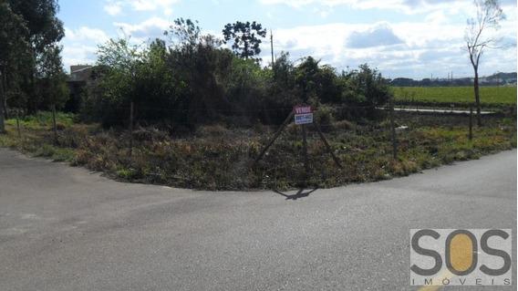 Terreno Para Venda Em Araucária, Costeira - 4370140005 Uirapuru