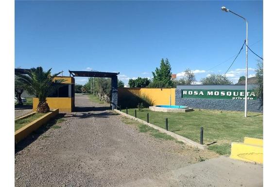 Lote En Venta, Los Corralitos, Guaymallen, Mendoza