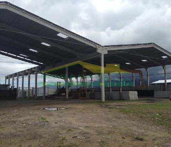 Área Gigante Comercial Ou Industrial, Confira Somente Na Imobiliária Em Praia Grande. - Mp10906