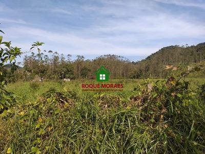 Terreno Em Juquiá, 50 Alqueires, Reflorestamento. Ref: 0050