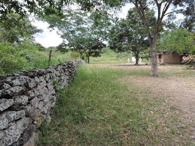 Finca Ganadera Con Zonas Agricolas Icononzo Se Resibe Casas