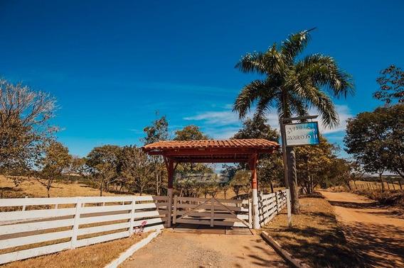 Fazenda Com 8 Quartos À Venda, 338800 M² Por R$ 4.900.000 - Zona Rural - Guapó/go - Fa0060