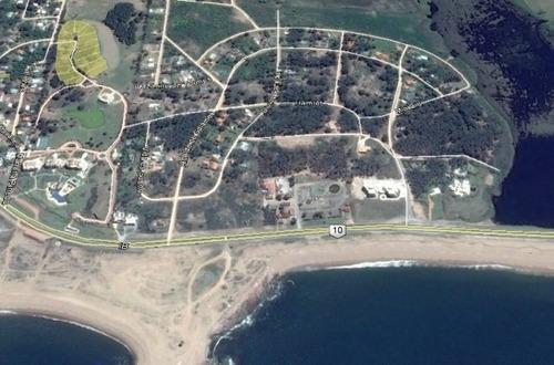 Imagen 1 de 8 de Terreno En Venta En Pinares