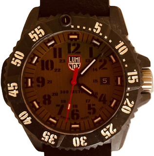 Reloj Luminox - Carbon Seal Series 3813