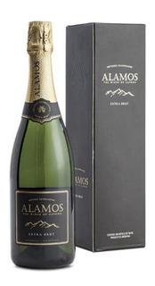 Estuche Champagne Alamos Extra Brut X750cc