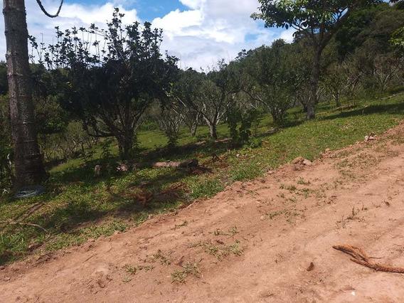 Terrenos Demarcados, Portaria, Agua Luz E Documentação Ok J