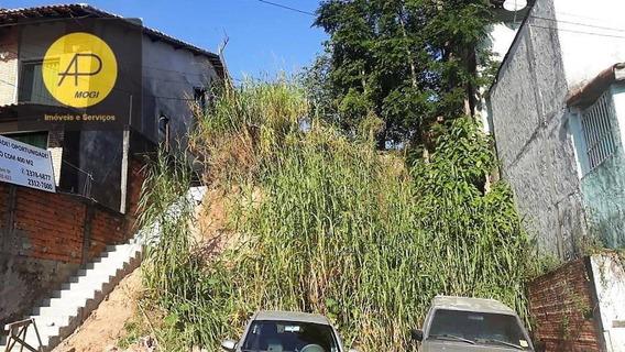Oportunidade Única Terreno Vila Nova Mazzei - Te0020