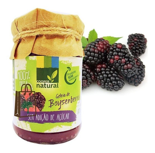 Geléia Boysenberry Orgânico S Açúcar Coopernatural 180g 3un.
