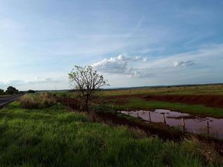Fazenda Para Venda Em Maracaju, Centro - 1057