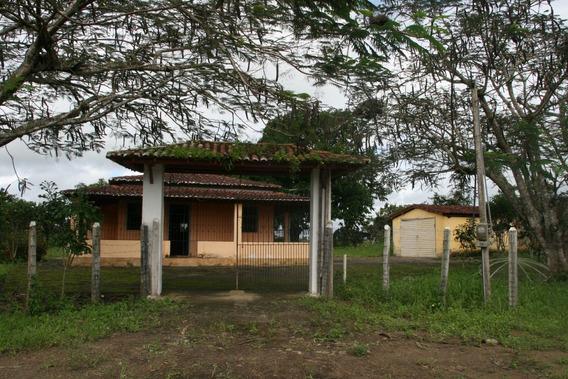 Sitio, Em São Felipe - Bahia - Recôncavo Baiano