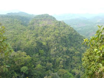Venta Hatos Caquetá, Colombia