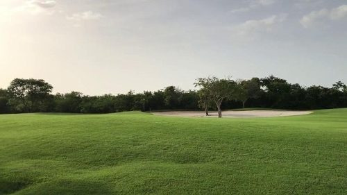 Terreno Frente A Campo De Golf Sobre Av. Principal En Yucatan Country Club
