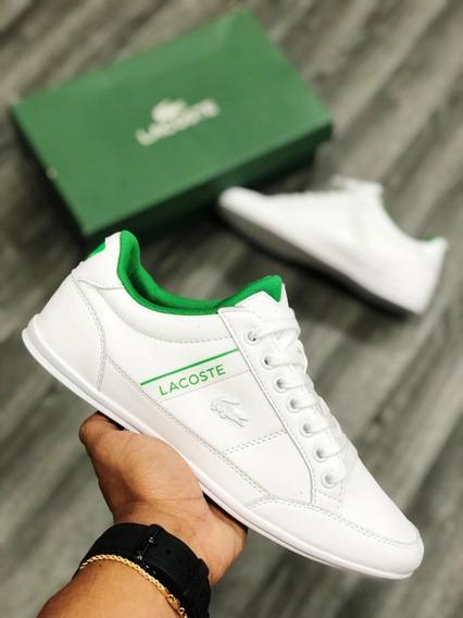 Tenis Zapatillas Lacoste Hombre Colección 2019 Original